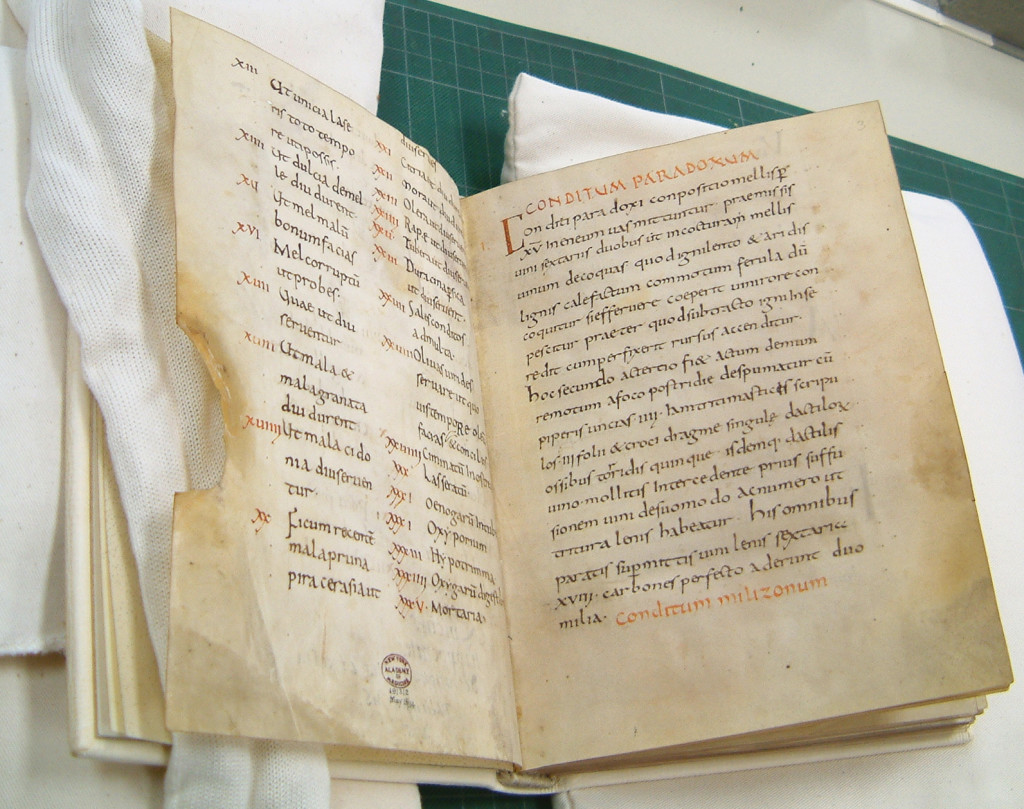 The Apicius manuscript (ca. 900 AD) of the monastery of Fulda in Germany, which was acquired in 1929 by the New York Academy of Medicine
